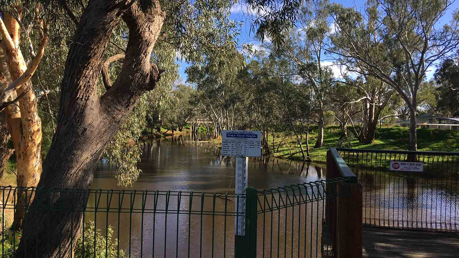 Avoca River Water Marks